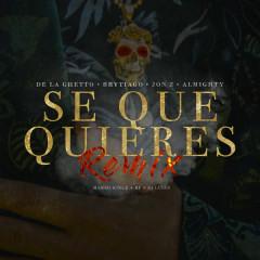 Sé Que Quieres (Remix) - De La Ghetto