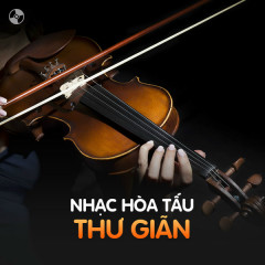 Nhạc Hòa Tấu Thư Giãn - Various Artists
