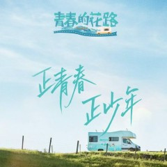 Hoa Lộ Thanh Xuân / 青春的花路 (Single)