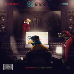 88 Birdz - Doe Boy, TM88