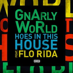 Hoes in This House - GnArly WoRld,Flo Rida
