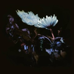 Loveless (Hudson Mohawke Remix)