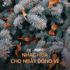 Nhạc Hoa Buồn Cho Những Ngày Gió Đông Về - Various Artists