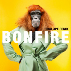 Bonfire (Total Ape Remix)
