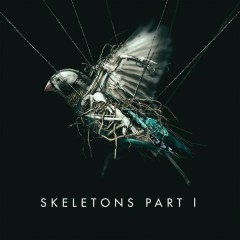 Skeletons: Part 1 - MISSIO