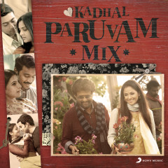 Kadhal Paruvam Mix
