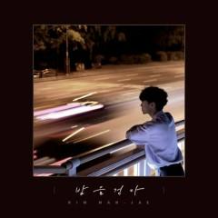 Walking At Night (Single)