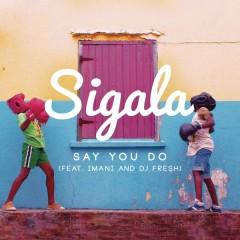 Say You Do (Radio Edit)