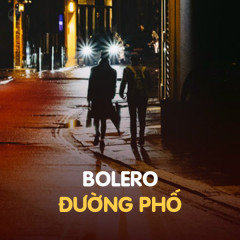 Bolero Đường Phố - Various Artists