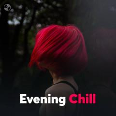 Evening Chill - Various Artists