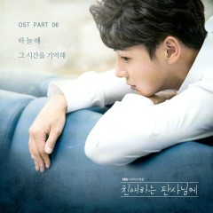 Your Honor OST Part.6 - Ha Neul Hae