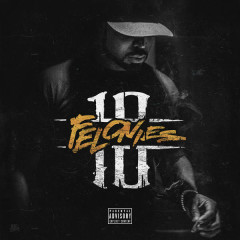 10 Felonies - Young Buck