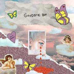 Goodbye Boy (Single) - Peg Parnevik