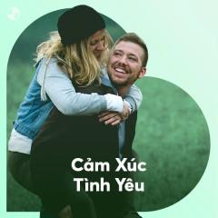 Cảm Xúc Tình Yêu - Various Artists