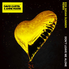 Don't Leave Me Alone (EDX's Indian Summer Remix) - David Guetta