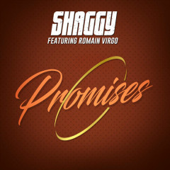 Promises - Shaggy,Romain Virgo
