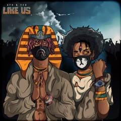 Like Us - Ayo & Teo