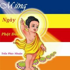 Mừng Ngày Phật Đản (Single) - Chubi Trần