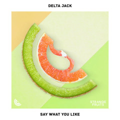 Say What You Like (Single) - Delta Jack