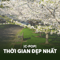 Thời Gian Đẹp Nhất - Various Artists