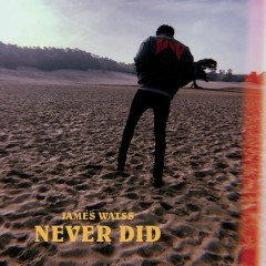 Never Did (Single)