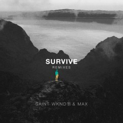 Survive (Remixes) - SAINT WKND,MAX