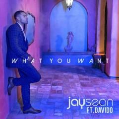 What You Want - Jay Sean,Davido