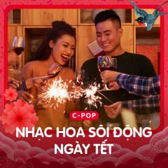 Nhạc Hoa Sôi Động Cho Ngày Tết - Various Artists