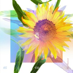 [Re:Flower] PROJECT #5 (Single) - EXID