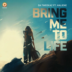 Bring Me To Life (Single)