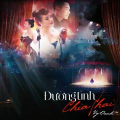 Đường Tình Chia Hai (Single) - Vy Oanh