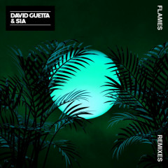 Flames (Remixes) - David Guetta, Sia