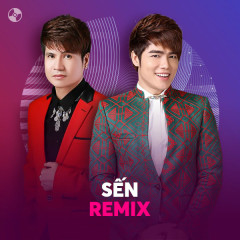 Sến Remix - Various Artists