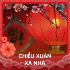 Chiều Xuân Xa Nhà - Various Artists