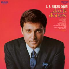 L.A. Break Down