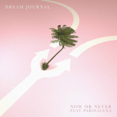 Now Or Never (Single)
