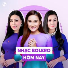 Nhạc Bolero Hôm Nay - Various Artists