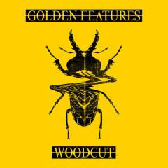 Woodcut (Remixes)