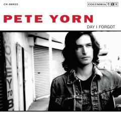 Day I Forgot - Pete Yorn