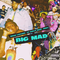 Big Mad (Single)