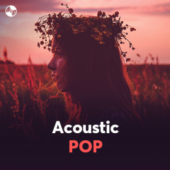Acoustic Pop - Various Artists