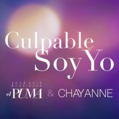Culpable Soy Yo - José Luis Rodríguez,Chayanne