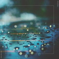Into The Rain (Single)