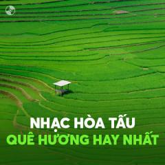 Nhạc Hòa Tấu Quê Hương Hay Nhất - Various Artists