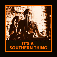 It's A Southern Thing - Various Artists