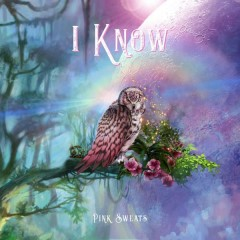 I Know (Single) - Pink Sweat$