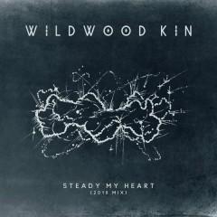 Steady My Heart (2018 Mix)