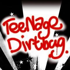 Teenage dirtbag - Various Artists