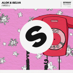 I Miss U (Single) - Alok, Selva