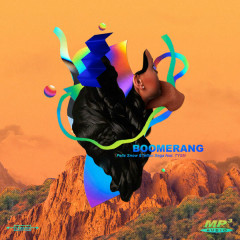 Boomerang (Single) - Felix Snow, Teflon Sega